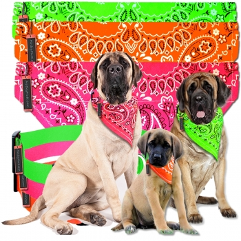 Dog Bandana Slips and Collar for Large Dogs