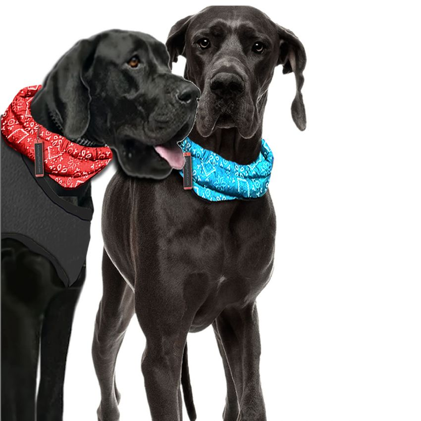 Cooling Dog Bandana Collar for Large and Big Dogs Great Danes Mastiffs