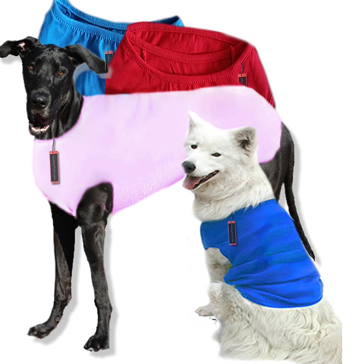 Large Dog Tees