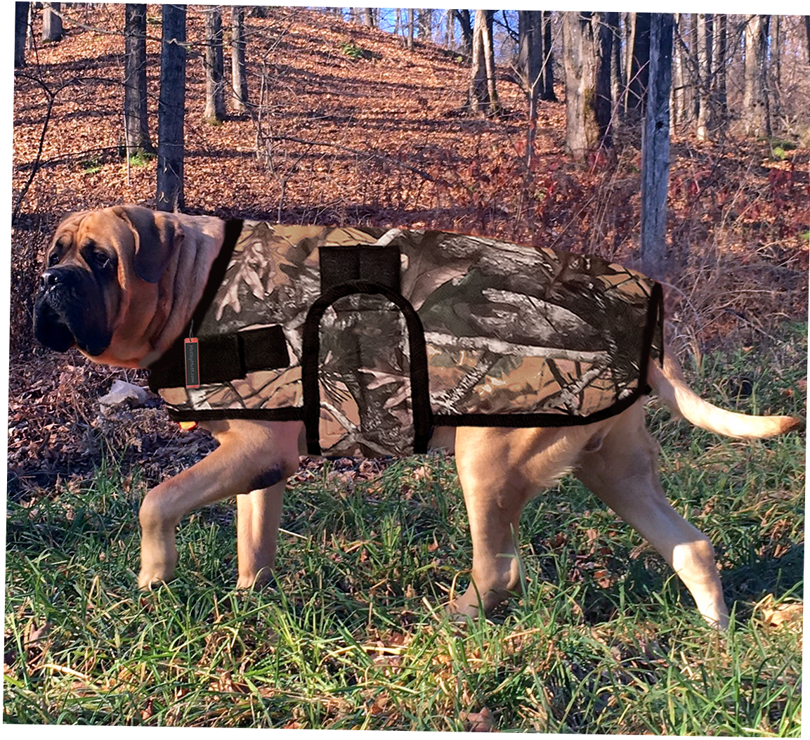 Dog Coats for Boxers Mastiffs and Great Danes
