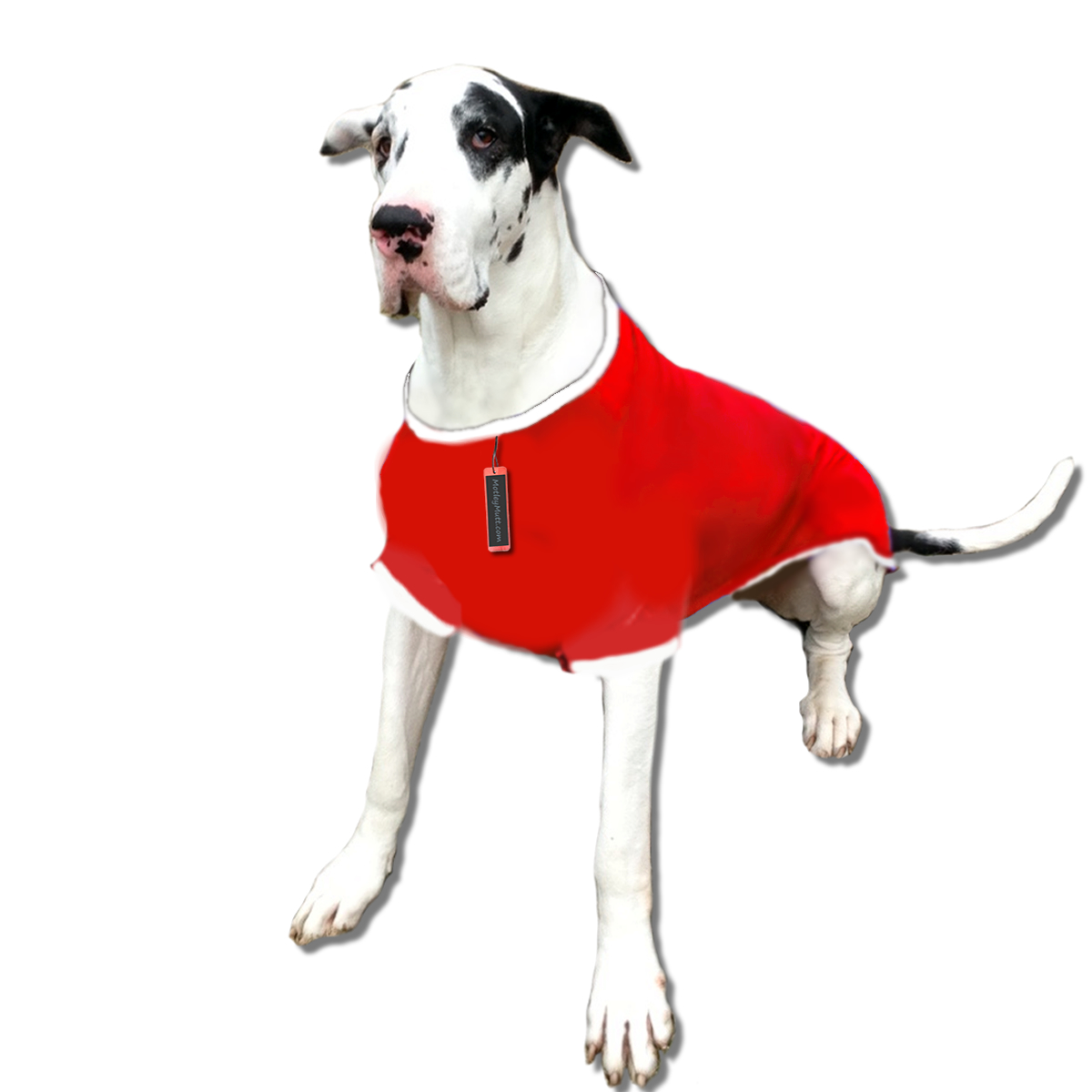 Christmas Shirts for Great Dane Dogs