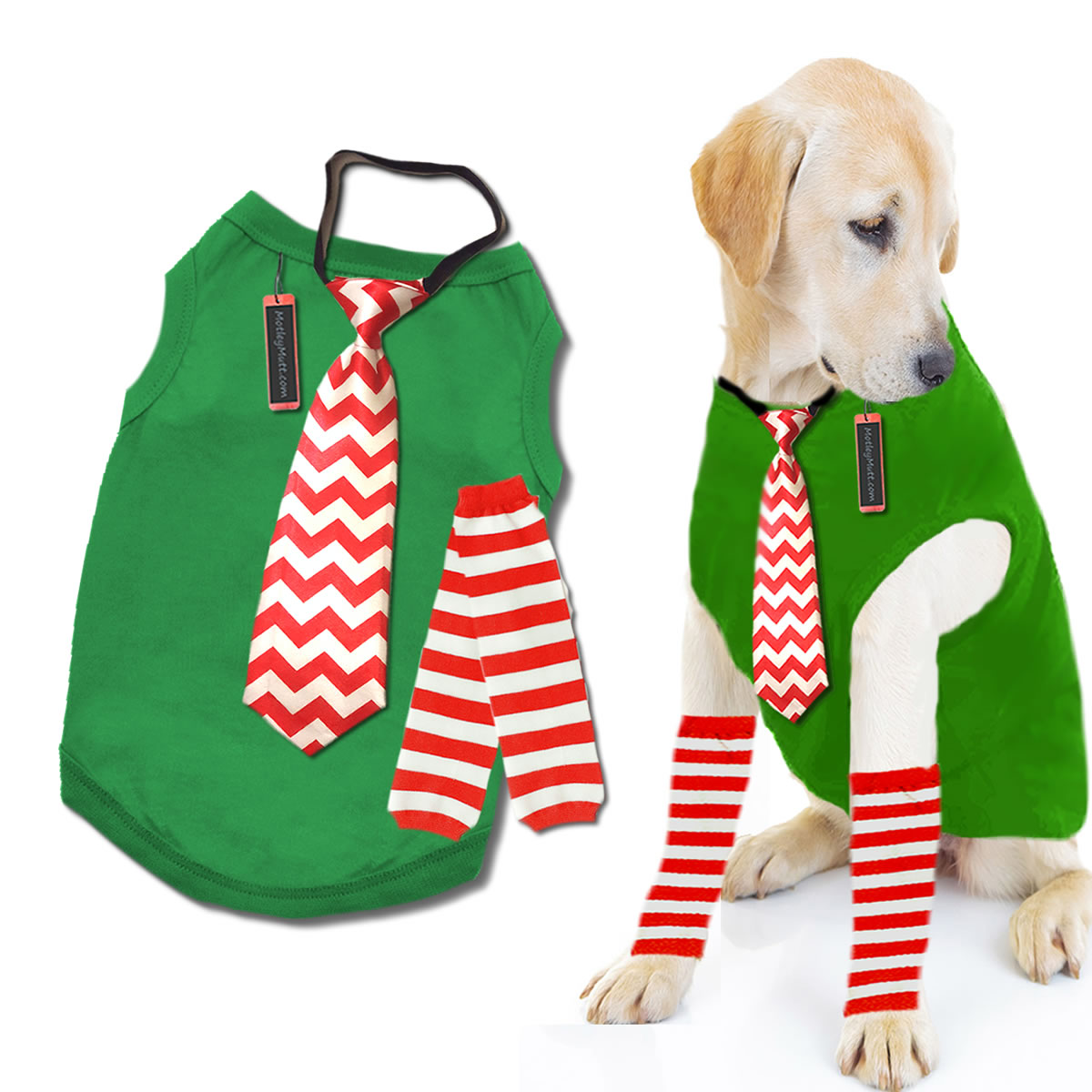 Large Breed Puppy Christmas Outfit